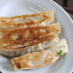 Panfried vegetable and pork dumplings